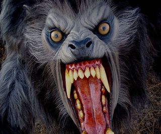 American-werewolf-in-london-lifesize-21